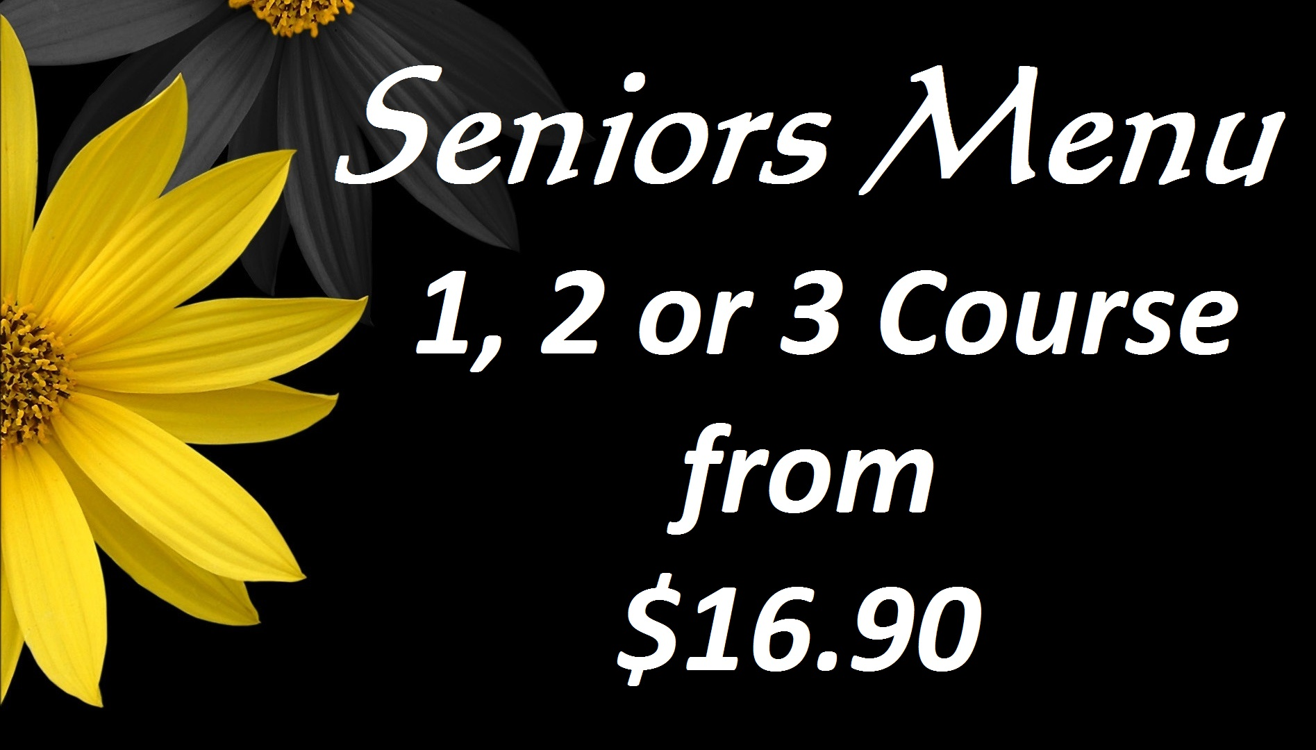 seniors-screen
